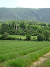 La Provence 2