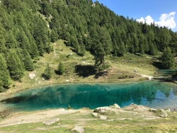 Lac Blue Arrola