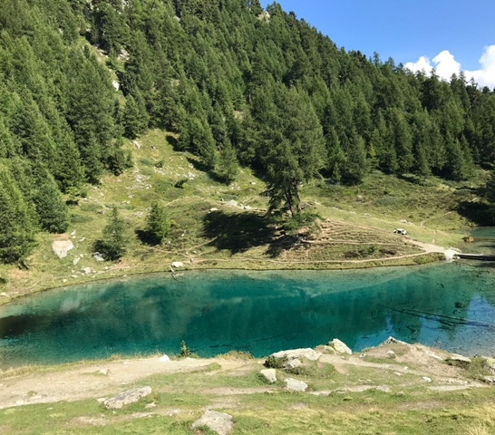 Lac Blue Arrola