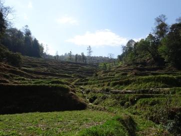 Namobuddha surroundings