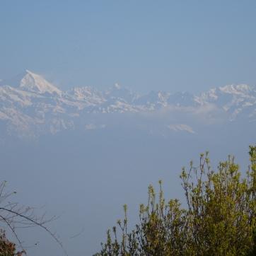 Namobuddha view