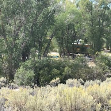 bannack bush camp