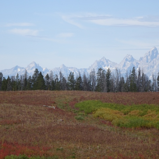 Colter Bay to Lava Mountain