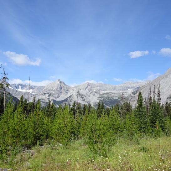 Sparwood to Elk