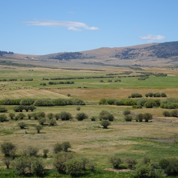 Wise River to Bannack