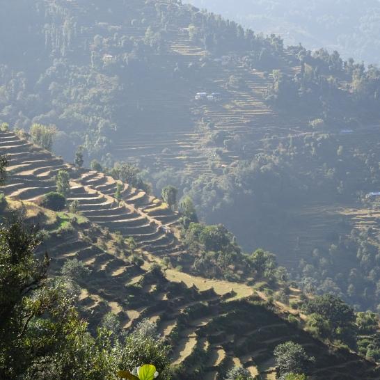 Landruk to Tolka terraces