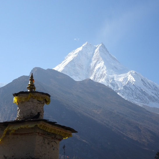 MANASLU from SAMAGAUN