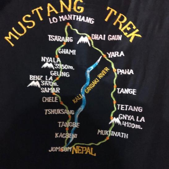 MUSTANG trek simple rep t shirt
